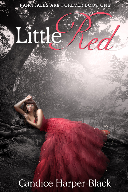 Premade Ebook Cover - Fantasy, Fairy Tale, Paranormal, YA, Adult Romance