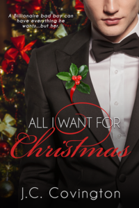 premade book cover, ebook cover, romance, christmas, contemporary, women's fiction